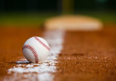 Ball Sport Baseball White 4K Wallpaper