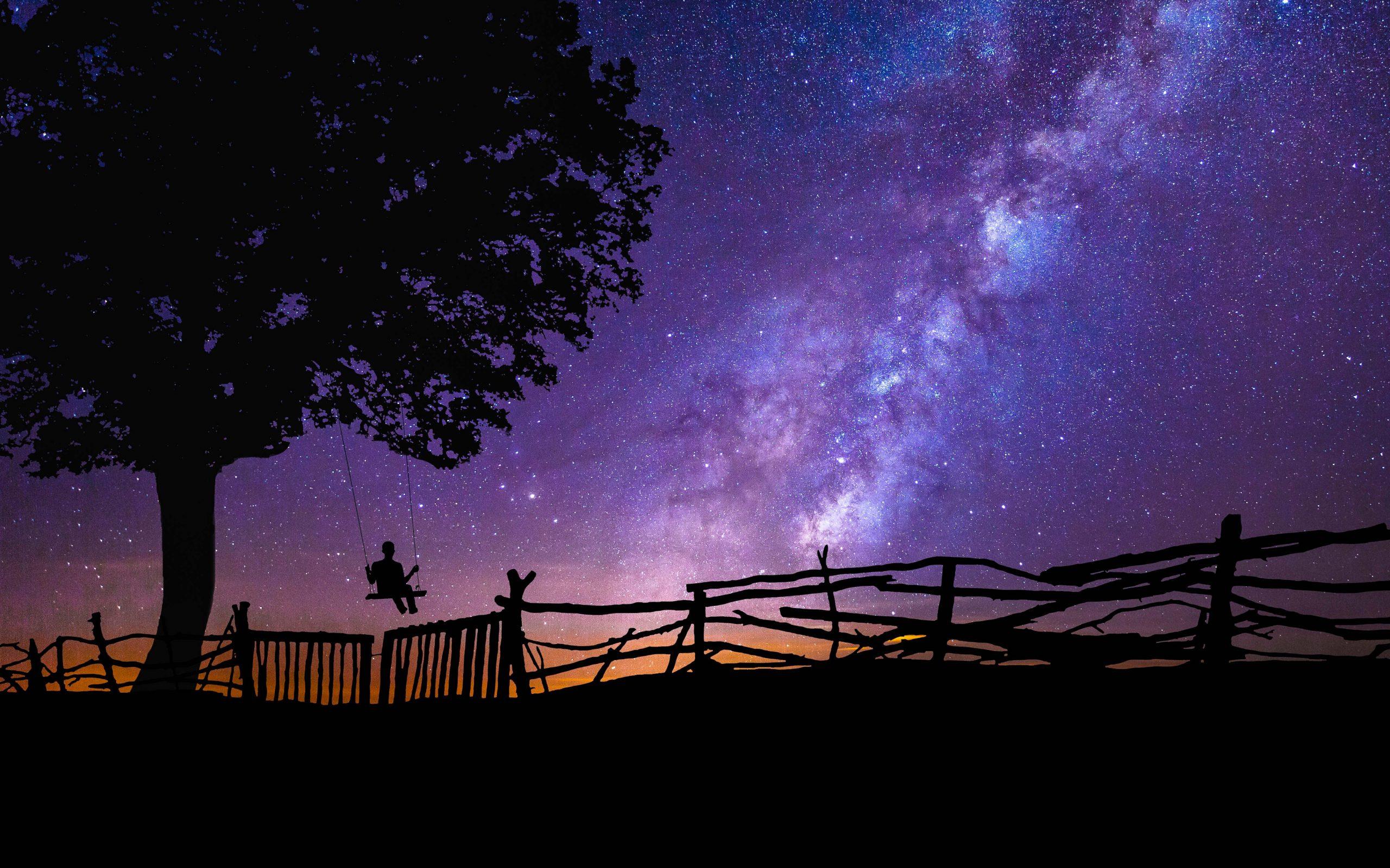 Blue Purple Night Galaxy Stars Tree 4k Wallpaper Best Wallpapers
