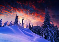 Blue Red Sky Trees Snow Winter 4K Wallpaper