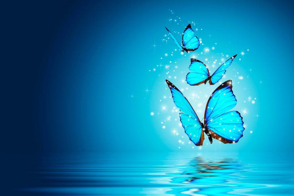 Butterfly Blue Water Magical 4K Wallpaper