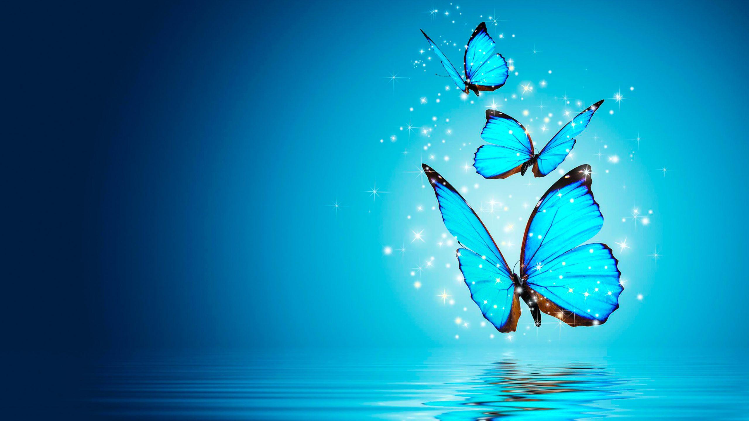 Butterfly Blue Water Magical 4K Wallpaper - Best Wallpapers