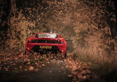 Car Red Ferrari Road Path Leaves 4K Wallpaper