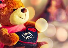 Cute Teddy Bear I Love You Heart Red 4K Wallpaper