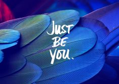 Just Be You Quote Feathers Blue 4K Wallpaper