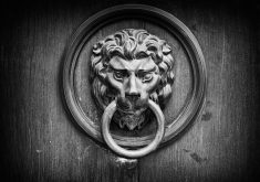 Lion Handle Door Monochrome 4K Wallpaper