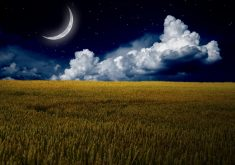 Moon Night Blue Sky Clouds Stars Grass 4K Wallpaper