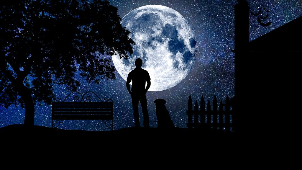 Moon Person Night Dog Stars Blue Sky 4K Wallpaper