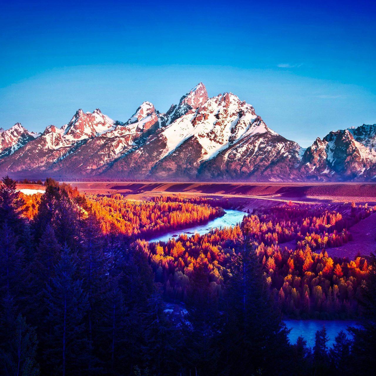 Smartphone Wallpaper 4k Nature: Mountains Nature Snow Blue Sky Trees 4K Wallpaper