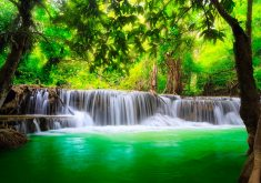 Nature Trees Waterfall Water Green River 4K Wallpaper