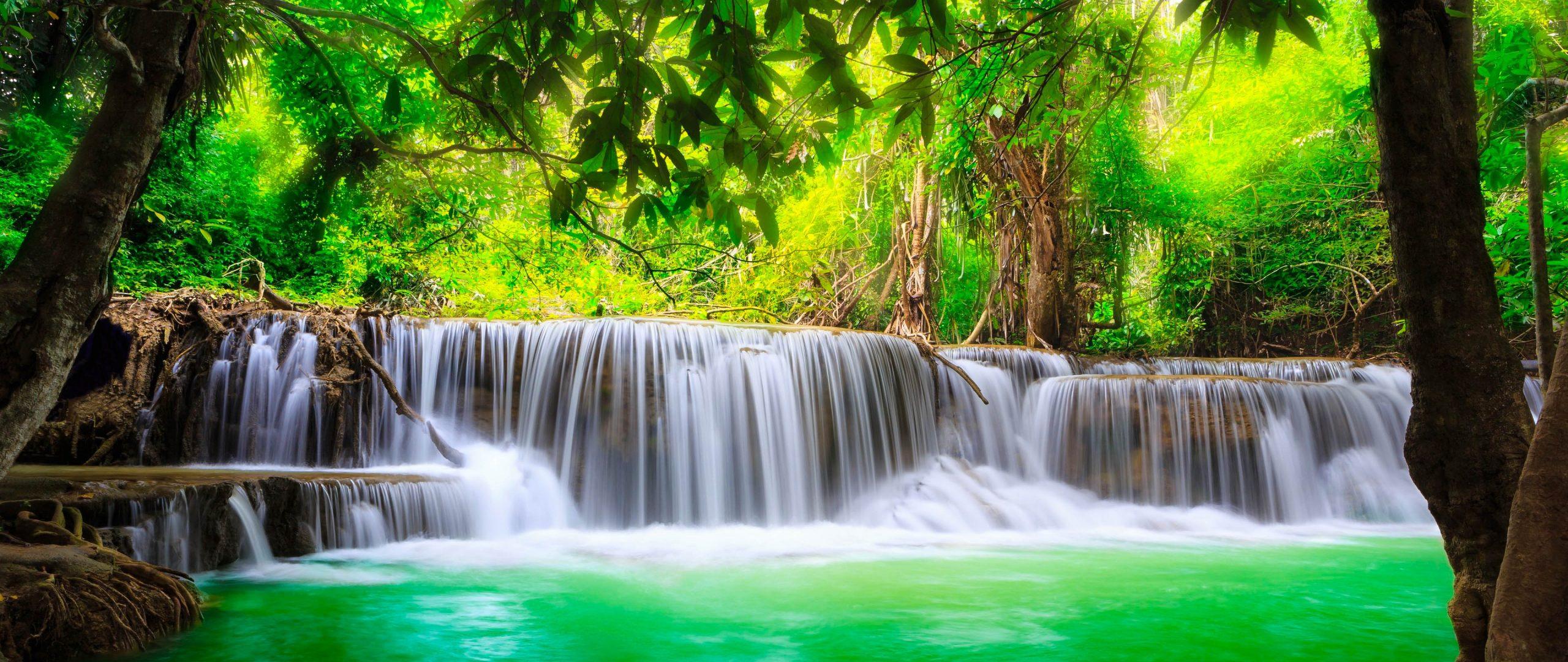 Nature Trees Waterfall Water Green River 4K Wallpaper ...