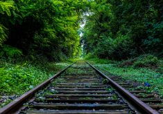 Railway Track Trees Green Way Path 4K Wallpaper
