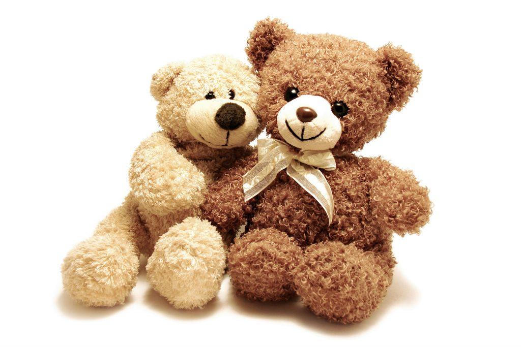 Teddy Bears Cute Brown 5K Wallpaper
