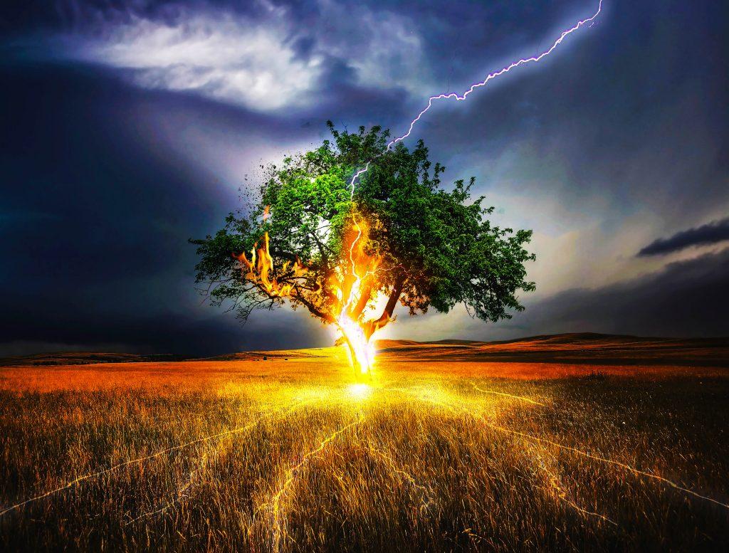 Tree Green Fire Lightning Strike Blue 4K Wallpaper