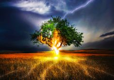 Tree Green Fire Lightning Strike Blue 4K Wallpaper