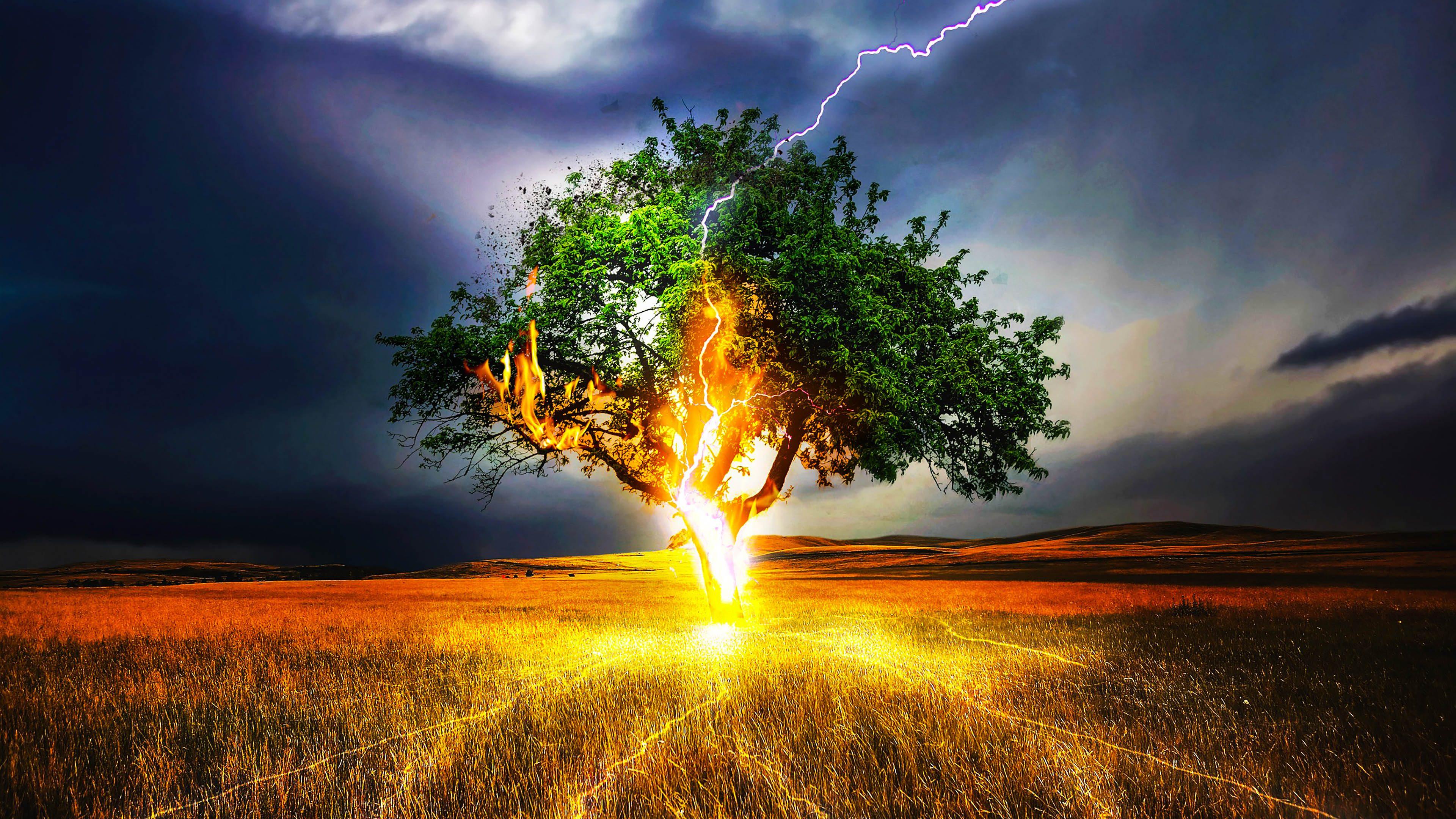 Tree Green Fire Lightning Strike Blue 4k Wallpaper Best