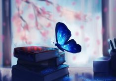 Butterfly Creative Blue Books 4K Wallpaper