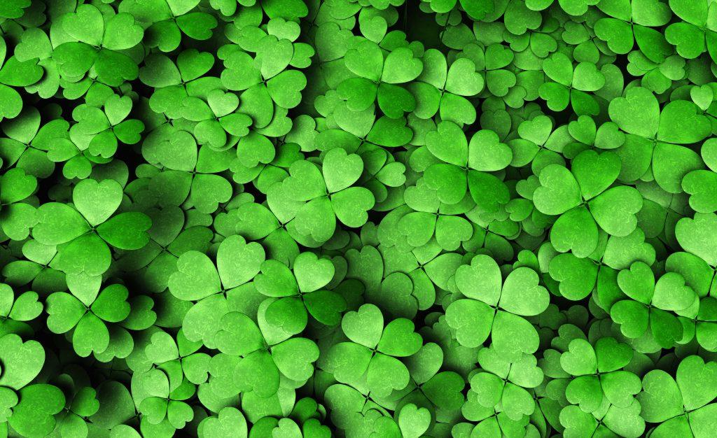 Green Flowers Leafs Pattern 5K Wallpaper