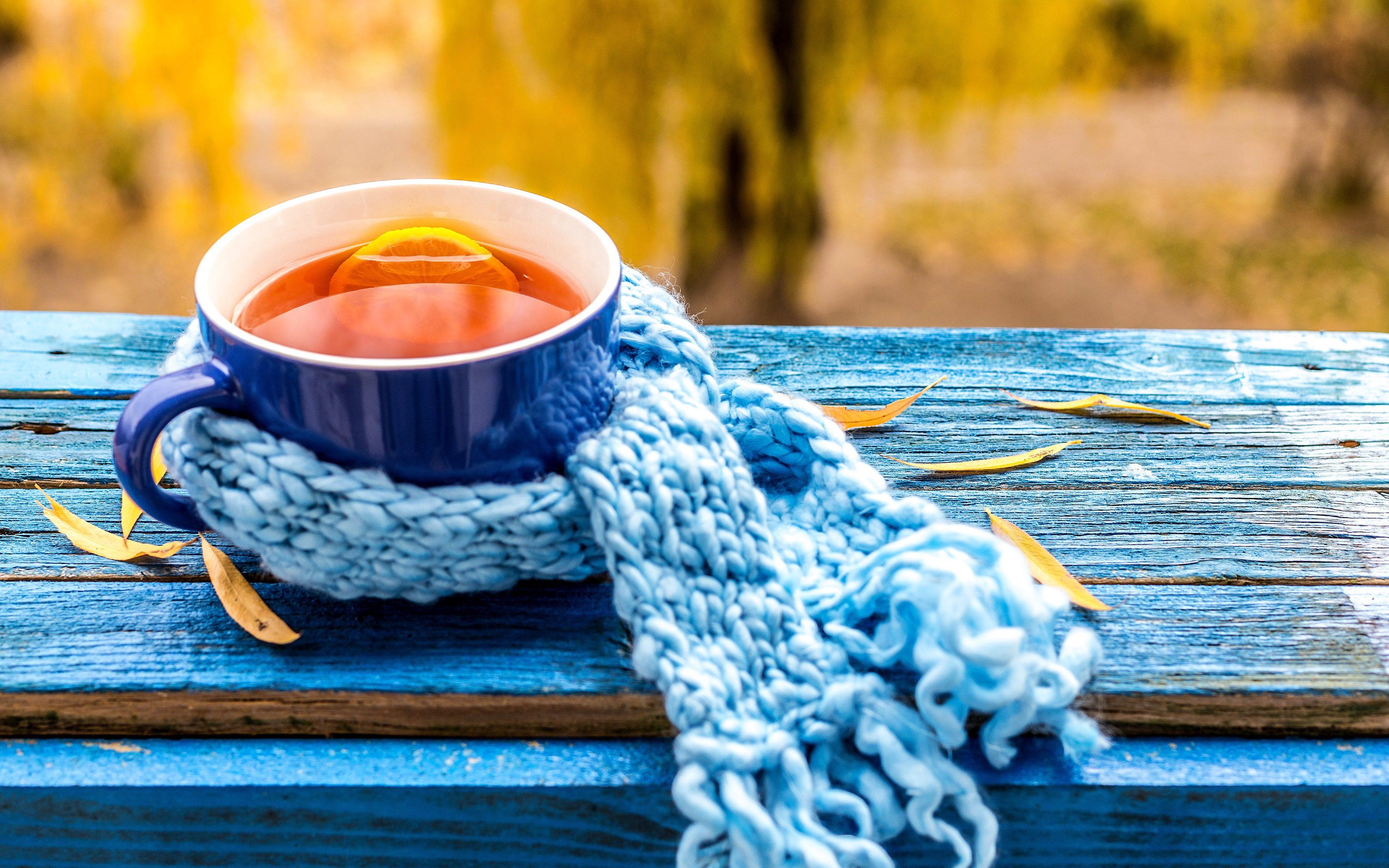 Lemon Tea Mug Blue Leaves 4k Wallpaper Best Wallpapers
