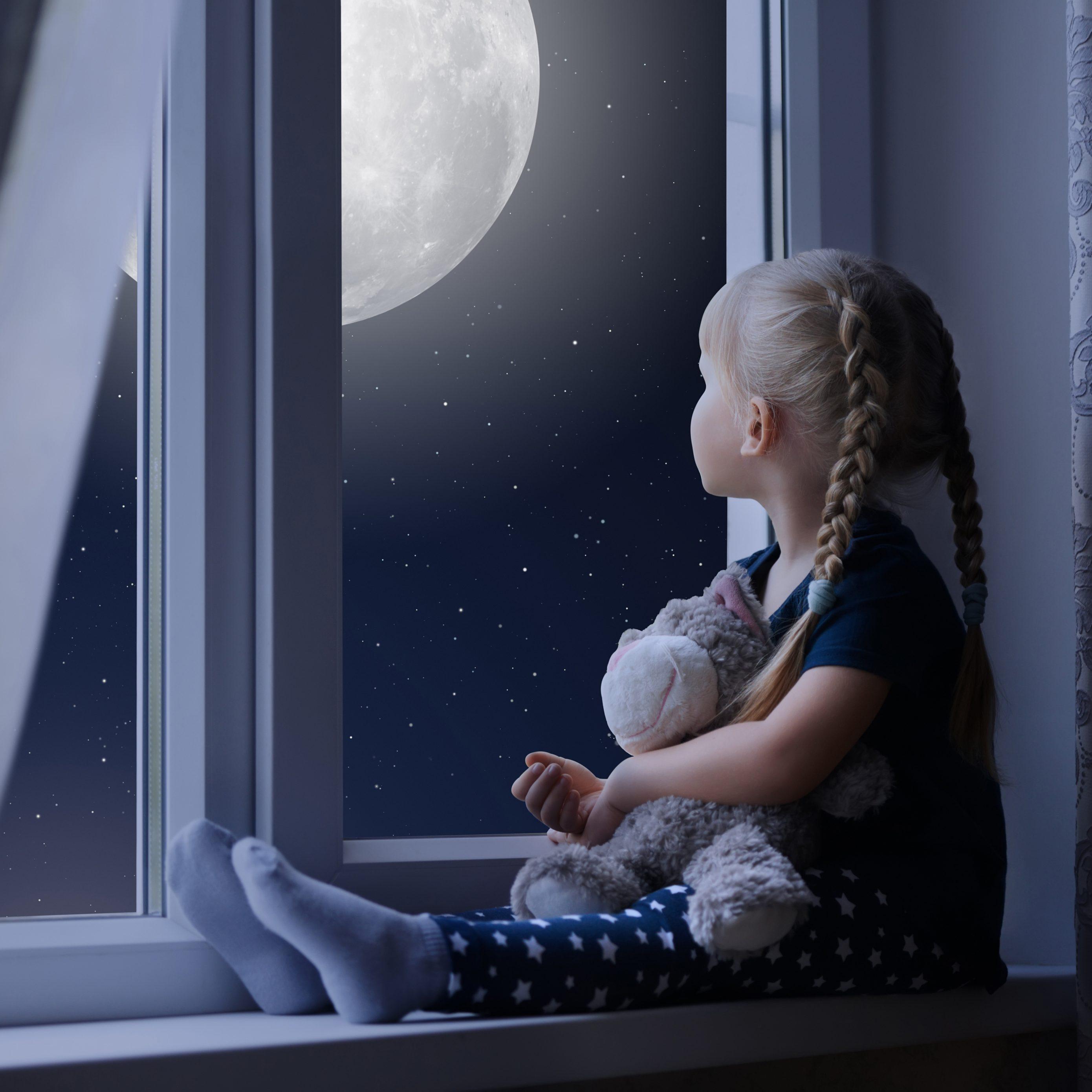 Little Girl Sad Window Teddybear Night Moon 8k Wallpaper Best