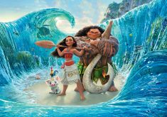 Moana Maui Ocean Animation Movie Poster 4K Wallpaper