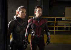 Ant-Man and the Wasp Ant-Man Wasp Movie 4K Wallpaper
