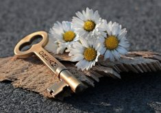 Dream Key Flowers 5K Wallpaper