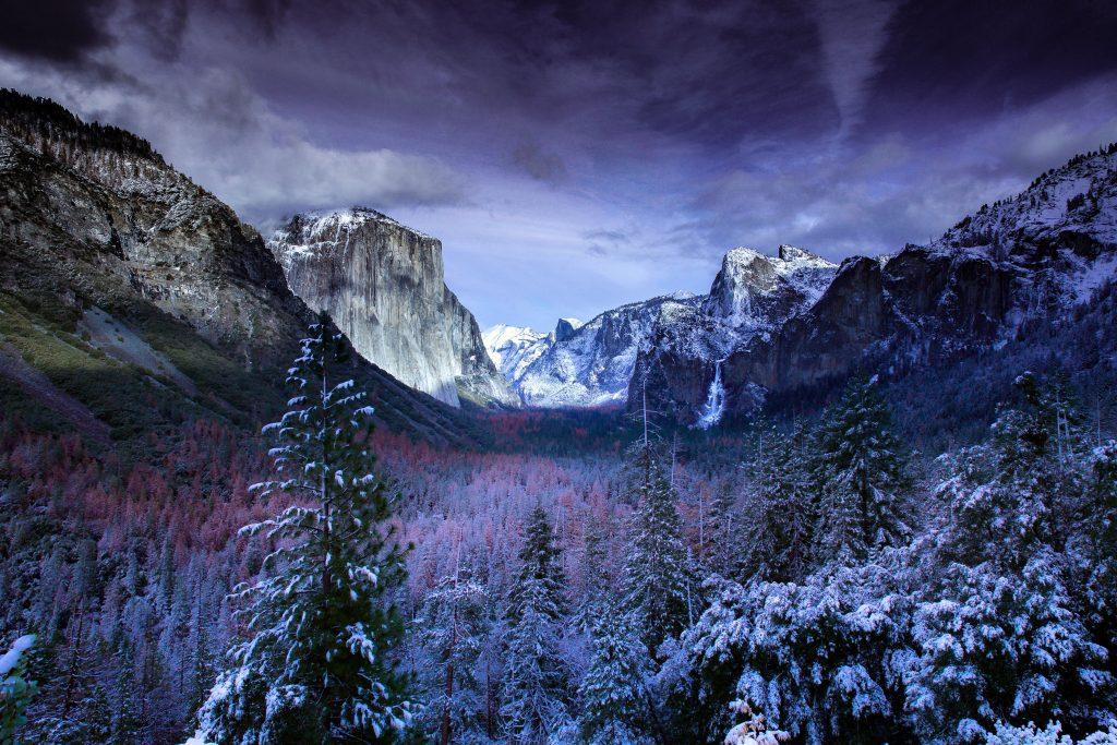 Forest Blue Snow Mountains 5K Wallpaper