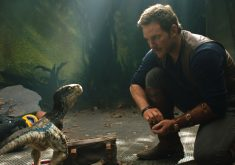 Jurassic World Fallen Kingdom Chris Pratt and Little Raptor 5K Wallpaper