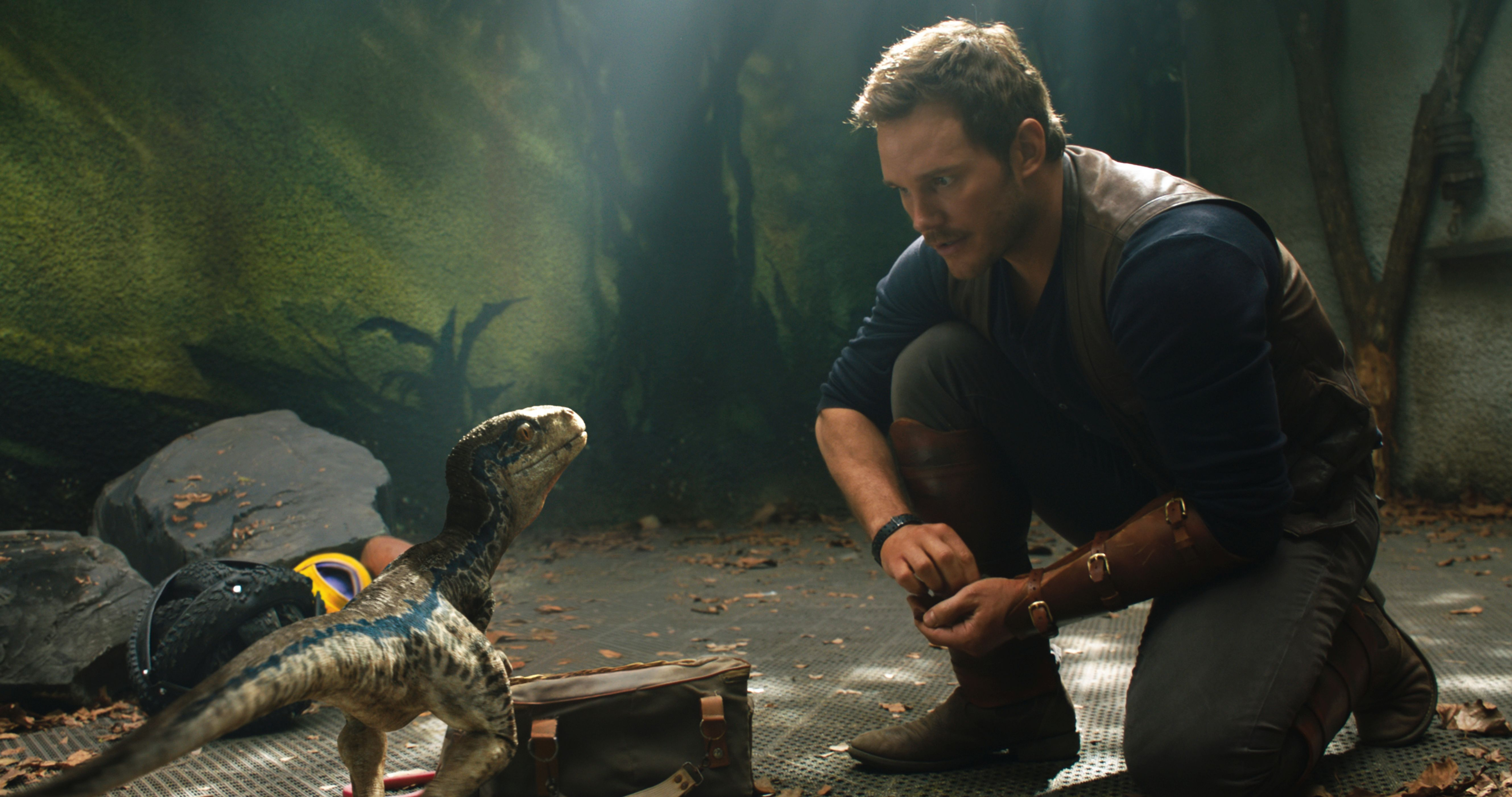 Jurassic World Fallen Kingdom Chris Pratt And Little Raptor 5K