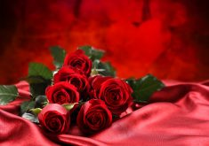 Love Bouquet Flowers Red Roses 4K Wallpaper
