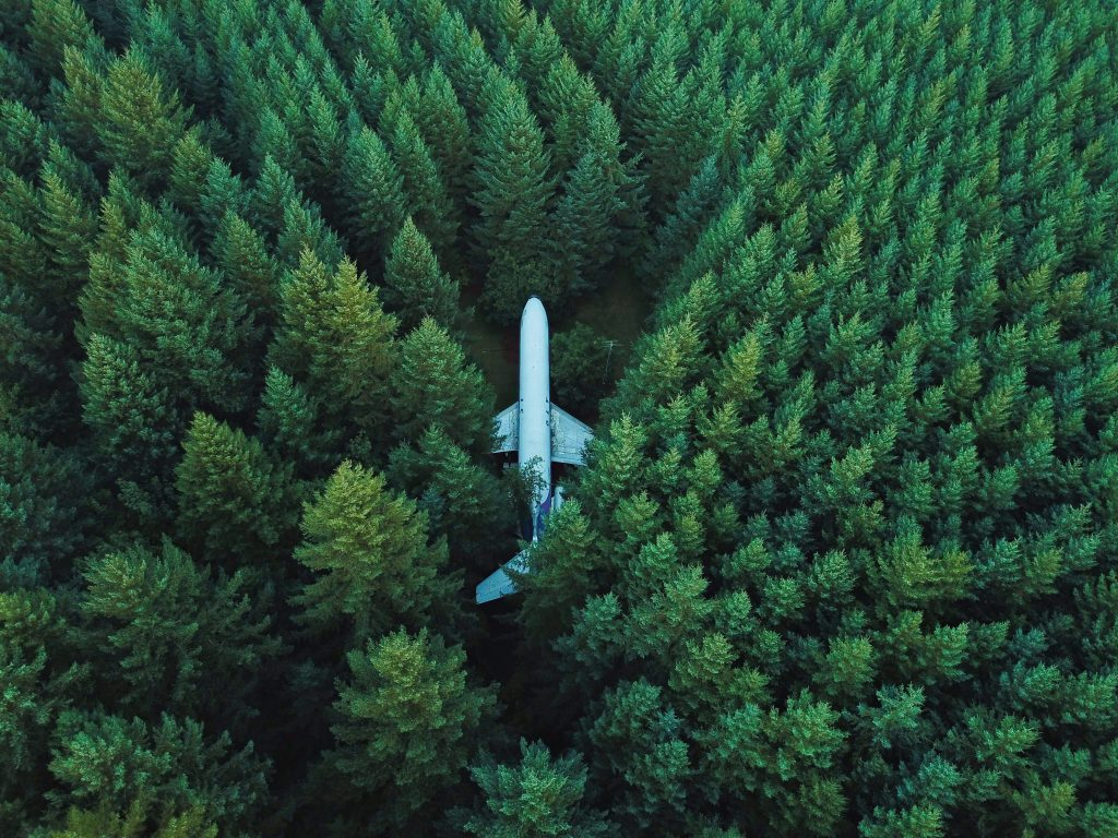 Plane in Forest 4K Wallpaper