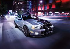 Ford Shelby Car 8K Wallpaper