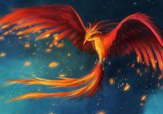 Phoenix Art 4K Wallpaper