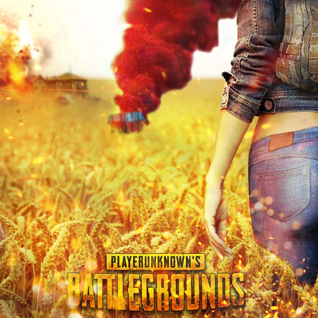Playerunknowns Battlegrounds PUBG Cover 4K Wallpaper